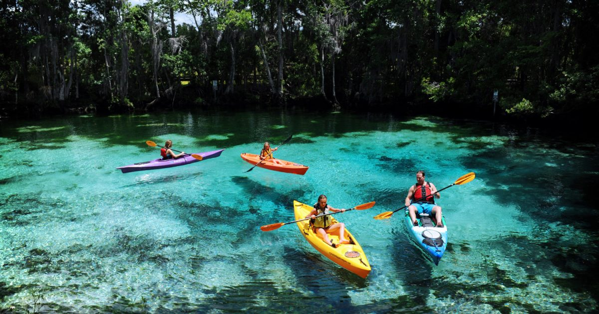 Nature Coast In Crystal River